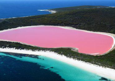7 Hồ Nước Có Màu Hồng Tự Nhiên Tuyệt Đẹp Trên Trái Đất