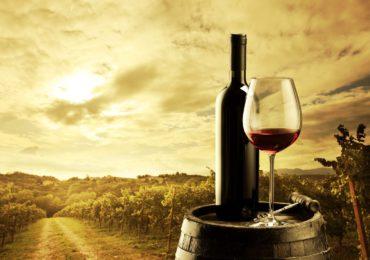 10 Xưởng Rượu Vang Hàng Đầu Thế Giới